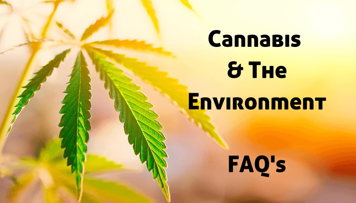 cannabis and the environment faq's